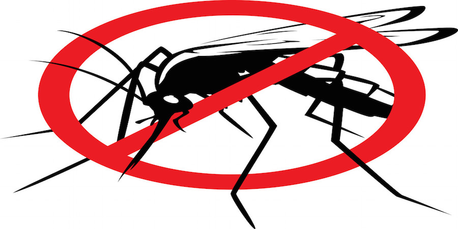 The Parable of the Man and the Mosquito – Israel and Gaza